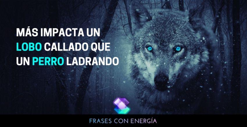mas-impacta-un-lobo-callado-que-un-perro-ladrando